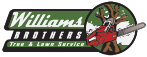 Williams Brothers Logo
