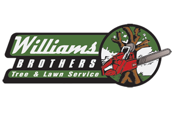 Williams Brothers logo
